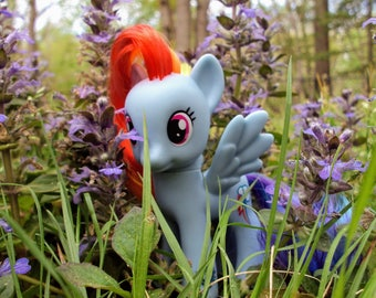 Rainbow Dash, MLP G4, MLP Photography, Digital Photography, Digital Download