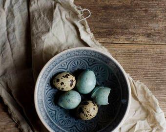 egg photograph, farmhouse decor, rustic kitchen decor, quail egg photo, blue and brown, country kitchen, food photograph, kitchen wall art