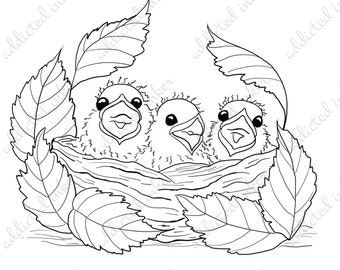 Baby birds in a nest digital stamp | line art | papercrafting and scrapbooking