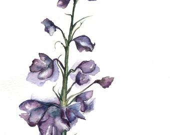 Watercolor Wildflower Print