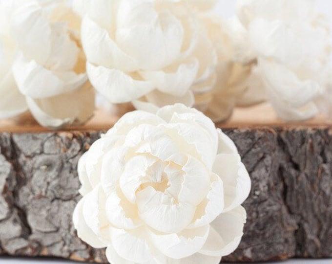 Fresh Peony Sola Flowers - Set of 5 , Sola Flowers, Wood Sola Flowers, Balsa Wood Flowers, Craft Flowers, sola wood flowers