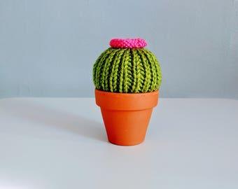Hand-Knit Flowering Mini Cactus in Pot