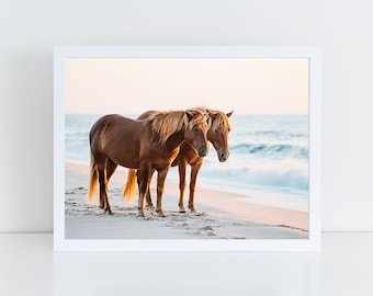 Wild Horse Photography, Beach Decor, Horse Wall Art, Equine Print, Nautical Print, Sunrise, Assateague Island, Horse Photo, Nursery Decor