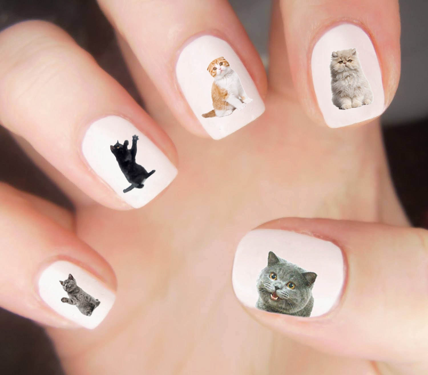 Cats Nail Decal / Grumpy Cat / Cat Silhouette / Nail Wraps / Nail ...