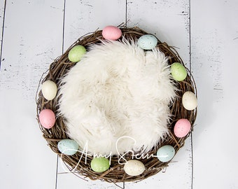 Nest with Eggs Digital Backdrop