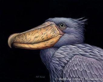ORIGINAL Watercolor Painting of Shoebill Stork, Bird Painting, Bird Art, Wall Art, Home Decor, Wildlife Art, Whalehead, Gray, FREE SHIPPING