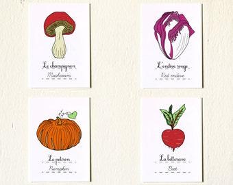 Baby Nursery 'Cute Vegetables' set of 4 5x7 giclee art prints: mushroom pumpkin red endive beet