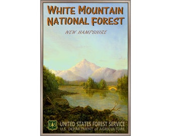 White Mountain National Forest New Original Travel Poster Albany Carroll County New Hampshire Retro Art Print 144