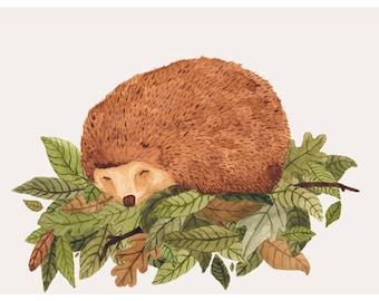 Hedgehog Illustration - Archival Print A4