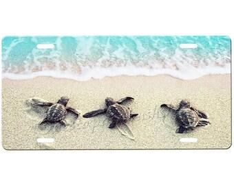 Sea Turtles License Plate