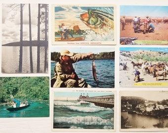 Vintage Postcards Lot of 8 Fishing, Cowboys, Japan, Deangodal