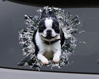 STICKER, boston terrier  window sticker, car sticker, pet car decal, funny sticker
