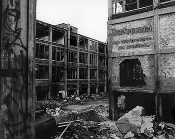 Collapsing City, Packard Plant 8x10 silver gelatin print