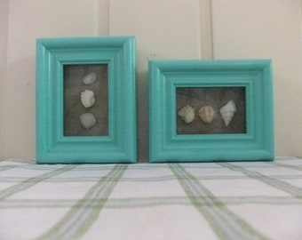 "Cottage Collection ""Sea Shell Box Frame"""