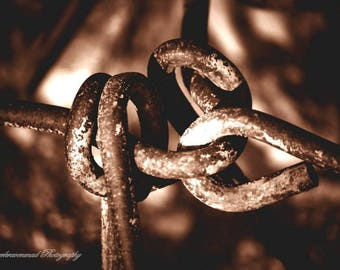 Linked In, Fine Art Photography, Industrial Photography, Sepia Photography