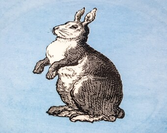 Delightful Bunny Cake Plates