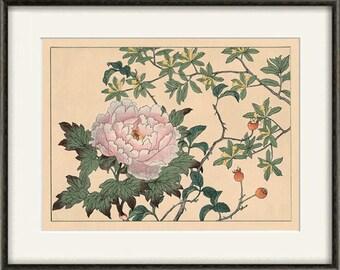 Peony art print Japanese botanical prints garden wall art home decor wall art japan poster antique print japanese decor flower wall art