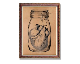 Antique heart anatomy print Medical illustration Anatomical decor