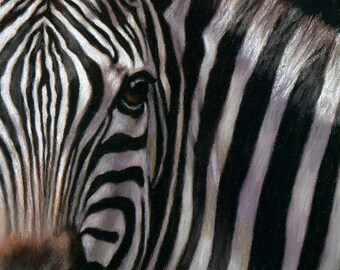 EYES OF AFRICA...Zebra