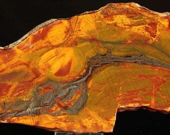 Beautiful Large Marra Mamba Tiger Iron Slab- A262