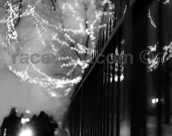 Mysterious Black and White Photography - Surreal City at Night - Dreamy Fairy Lights in Trees
