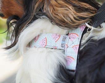 Harnais réglable pour chien - Pastèques / Harnais d'éducation / Harnais norvégien / Anti-traction / Accessoire chien / Ensemble pour chien