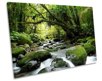Forest River Creek Landscape Green CANVAS WALL ART Framed Print Picture
