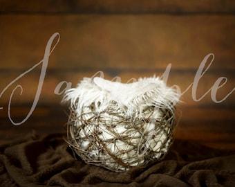 Newborn Baby Digital Backdrop - Photo Session - Bird Owl Nest - Branch Twig Bowl Bucket