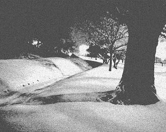 Blanket of Snow, Denver, Colorado