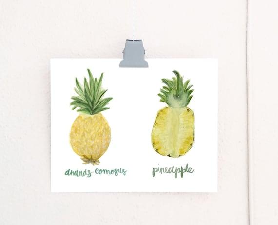 Watercolor Pineapple Anatomy art print of an original watercolor illustration