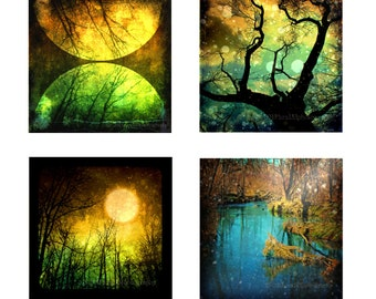 Autumn Home Decor Surreal Photography Nature Art Woodland Forest Trees Fantasy Art 5x5 Print Pack of 4 Photos - Journey into the Evernight