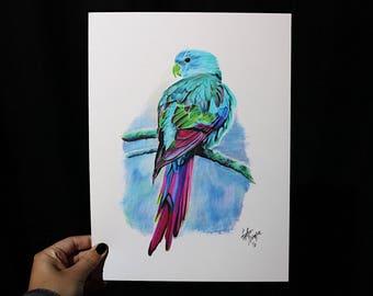 ORIGINAL - Colorful Bird