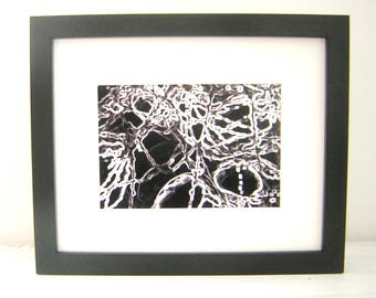 Black and white framed photograph branches,black white prints,mothers day,b&w art gifts, monochrome art, digital art,art photography, trees,