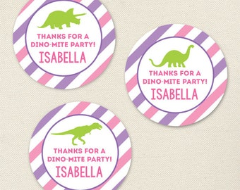 Pink Dinosaur Party Favor Stickers - Sheet of 12 or 24