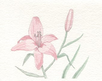 Pink Lily Card
