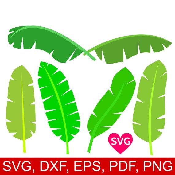 6 Tropical Banana Leaves SVG Bundle Printable Leaf