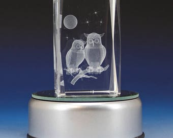 3D Glass Laser Cube with Owls