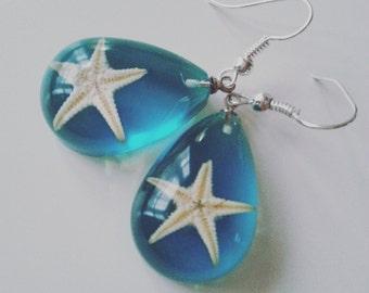 Clear, Aqua blue, Real starfish, starfish earrings, Ocean, sea life, drop, by newellsJewels on etsy
