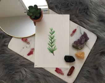 Hand Painted Original Watercolor of Rosemary