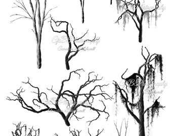 Bare trees and branches Photoshop brushes.