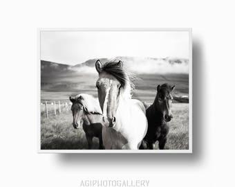 Icelander Horses Print, Wild Horses Black and White Scandinavian Nordic Woodland Print, Horses Printable Download, Scandinavian Woodland
