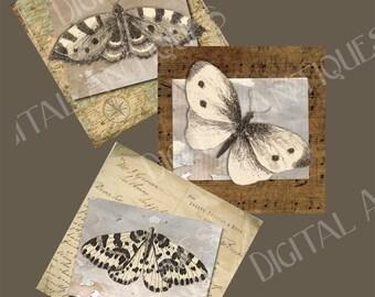 Vintage Printable Nature  Images Moths Tags Digital Download