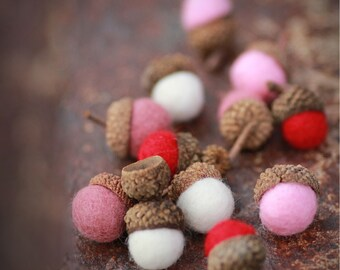Set of 12 SHADES OF LOVE  Wool Felted Acorns| boho, cottage chic, woodland, rustic