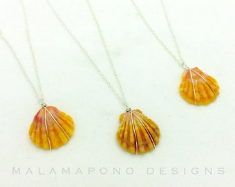 Beautiful Hawaiian sunrise shell pendant in sterling silver or 14k gold filled