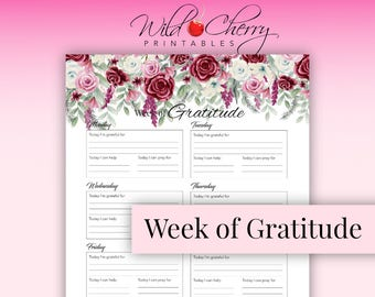 Printable Gratitude Inserts, Gratitude Journal, Planner Inserts, Printable Planner, Printable, Gratitude Log, Instant Download,  Printable