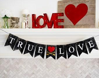 Valentine's Day Decor, True Love Banner, Valentines Banner, Valentine's Day Banner, Wedding Banners, Valentine's Day Theme Decor, B418