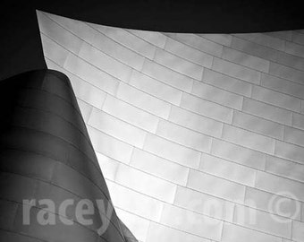 Los Angeles Print, Disney Concert Hall, Modern, Architecture, Frank Gehry, Gray Wall Art, Office Decor