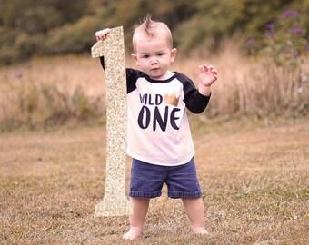 first birthday shirt, wild one birthday shirt, where the wild things are first birthday