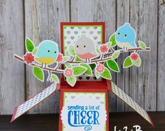 Bird Pop Up Box Card