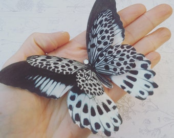 Hand Cut silk butterfly hair clip - Large Monochrome layered with Swarovski Crystals